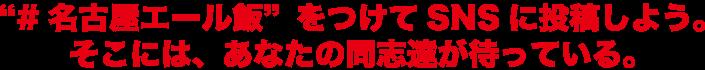 「#名古屋エール飯」をつけてSNSに投稿しよう。そこには、あなたの同志達が待っている。